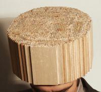 2.Head.jpg